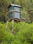 Watch tower in deep forest — Stock Photo