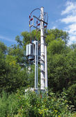 Small transformer station in forest — Stock Photo