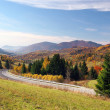 Road to Terchova village, Slovakia — Stock Photo