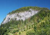 Bielska skala, National Nature Reserve — Stock Photo
