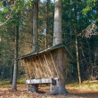 Animal feeder in Slovak forest — Stok fotoğraf