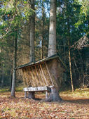 Animal feeder in Slovak forest — Foto Stock
