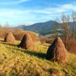 Autumn meadow with haystacks — Stock Photo #34738207