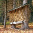 Foto Stock: Feeder prepared for animals in Slovak forest