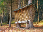 Feeder prepared for animals in Slovak forest — Stockfoto