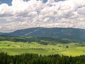 Forest and Kubinska Hola, Slovakia — Stock Photo