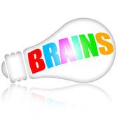 Brains — Stok fotoğraf