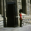 Guard, Tower of London - Stockfoto