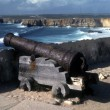 Stock Photo: Cannon on walls of Sagres Fort