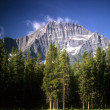 Jagged mountain peak — Stock Photo #13508397