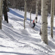 Stock Photo: Lone skier weaves her way through bare winter aspens