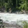 Stock Photo: Whitewater river runs through forest