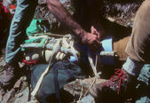 Mountain rescue - splinting a broken leg — Photo