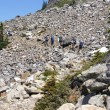 Hikers on steep rocky trail - Foto Stock