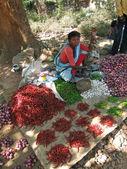 Indische frau verkauft paprika — Stockfoto