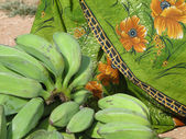 Green bananas and sari — Stock Photo
