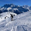 Stock Photo: Skier with Dents du Midi