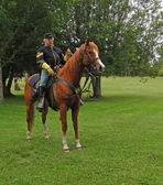 Union cavalry sergeant on his horse — Stock Photo