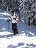 Lone skier weaves her way through bare winter aspens — Stock Photo