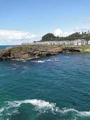 Oceanfront condominiums on rocky headland — Stock Photo