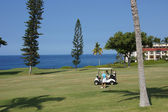 Unidentified golfers enjoy a game of golf — Stock Photo