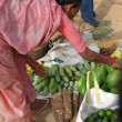 Indian woman in saree chooses fruit — Zdjęcie stockowe