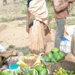 Stockfoto: Indiwomin saree chooses fruit