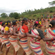 Village women link arms for  Gdaba harvest dance - Foto de Stock
