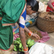 Indian woman in saree chooses fruit — Stok fotoğraf