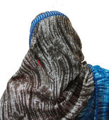 Isolated, Woman in bright sari — Stock Photo