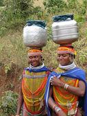 Bonda tribal women pose for portraits — Stock Photo