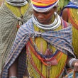 Bonda tribal women pose for portraits on their way to the  weekly market — Stock Photo
