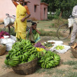 Indian woman in saree chooses fruit — Stockfoto