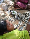 Indisk kvinna säljer torkad fisk — Stockfoto