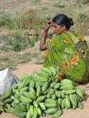 Green bananas and sari — Stockfoto