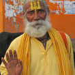 Stock Photo: Hindu Sadhu gives blessings