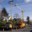 Seattle City Light workmen replace an aging utility pole — Stock Photo