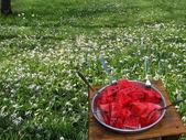 Jasny czerwony arbuz — Zdjęcie stockowe