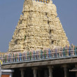 Stock Photo: Shivtemple entrance