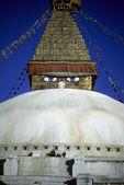 Stupa gözleri — Stok fotoğraf