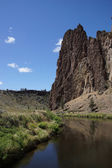 Valley floor of the Crooked River — 图库照片