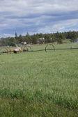 Self propelled irrigation sprayers — Stock Photo