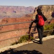 Tourists enjoy the view overlooking the South Rim — Stock Photo #36746455