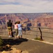 Tourists enjoy the view overlooking the South Rim — Stock Photo #36746463