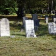Stock Photo: Old tombstones from 19th century