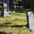 Old tombstones from 19th century — Stock Photo #36747147