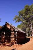 Detail of pioneer log cabin — Fotografia Stock