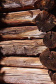 Detail of pioneer log cabin — Stock Photo