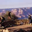 Tourists gaze over the South Rim — Stock Photo