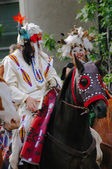 Plains Indian on horseback — Foto Stock
